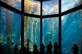 Picture of the Monterey Bay Aquarium